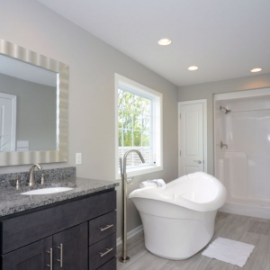 Ashley Ridge Brighton Township Master Bath