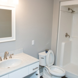 Cove_Court_bathroom