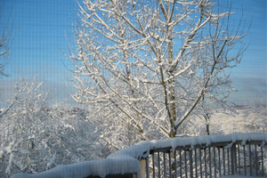 Preparing for Winter tips for Homeowners